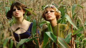 Photo film Les Petites marguerites